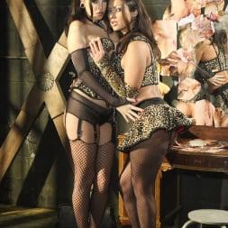 Nikita Denise in 'Wicked' Predator II The Return Scene 1 (Thumbnail 1)